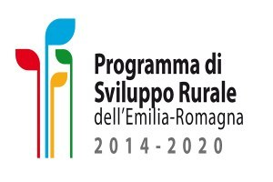 Piano di sviluppo rurale: condizioni di ammissibilità delle fatture emesse dal 1 gennaio 2021